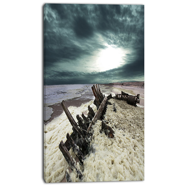 Designart Skeleton Coast National Park Landscape Canvas Art Print