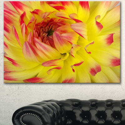Designart Smooth Yellow Red Flower Petals Floral Canvas Art Print - 3 Panels