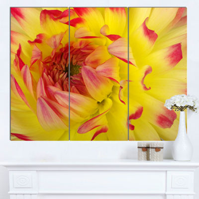 Designart Smooth Yellow Red Petals Close Up FloralCanvas Art Print - 3 Panels