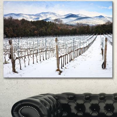 Designart Snow Covered Vineyard Rows Italy Extra Large Landscape Canvas Art - 3 Panels