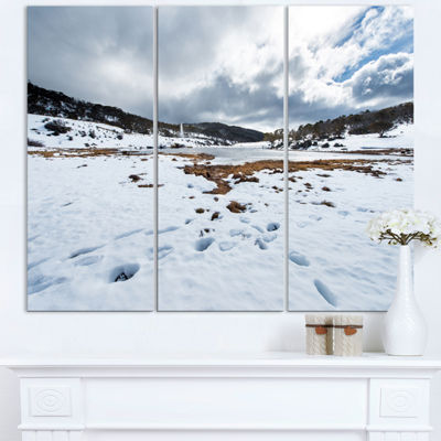 Designart Snow Mountains In Kosciuszko Park Landscape Triptych Canvas Art Print