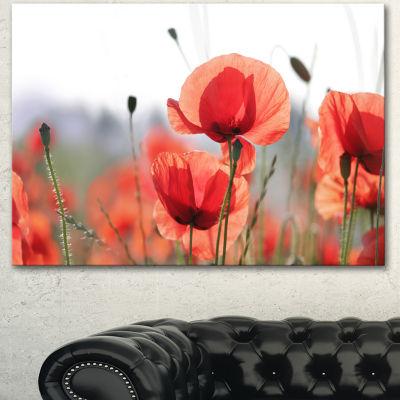Designart Soft Poppy Flowers Petals View Floral Canvas Art Print