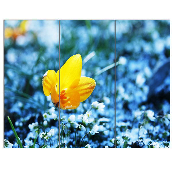 Designart Solitary Yellow Flower On Blue Floral Canvas Art Print - 3 Panels