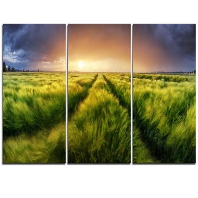 Designart Storm And Light On Meadow Landscape Artwork Triptych Canvas
