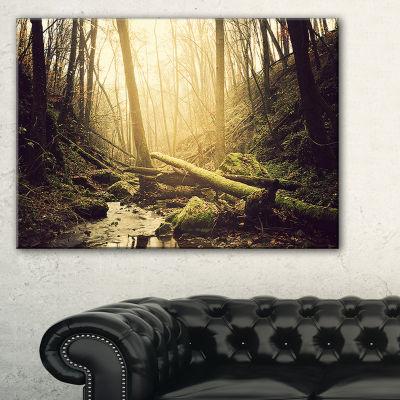 Designart Stream In The Dark Wild Forest Forest Canvas Art Print