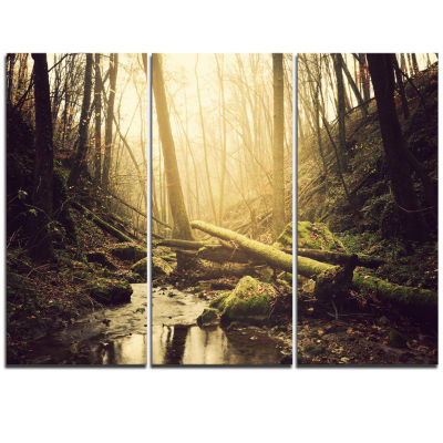 Designart Stream In The Dark Wild Forest Forest Triptych Canvas Art Print