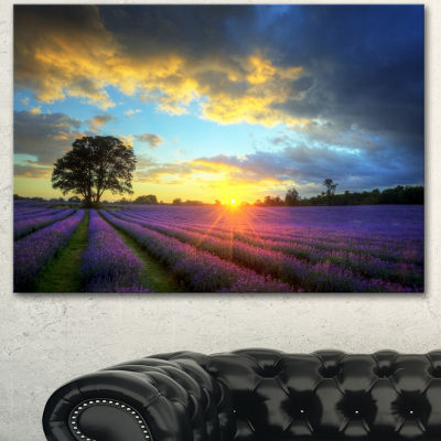 Designart Stunning Sunset Over Lavender Fields Large Flower Canvas Wall Art - 3 Panels