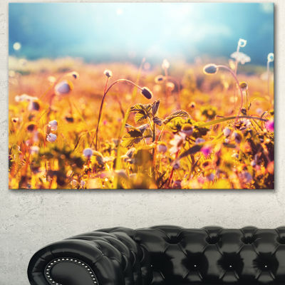 Designart Summer Field With Beautiful Flowers Floral Canvas Art Print