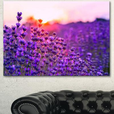 Designart Summer Sunset Over Lavender Field FloralCanvas Art Print - 3 Panels