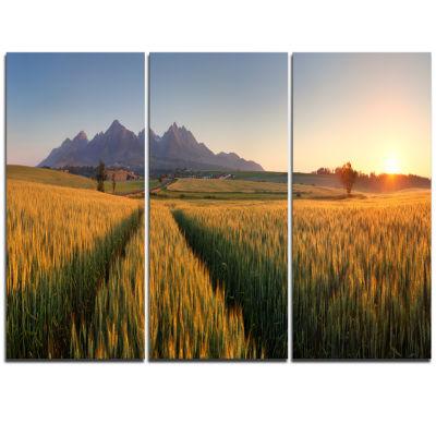 Designart Summer Wheat Fields Slovakia Landscape Artwork Triptych Canvas