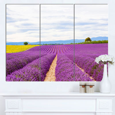 Designart Sunflower And Lavender Fields LandscapeCanvas Wall Art - 3 Panels