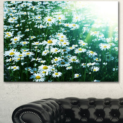 Designart Sunny Garden With Cute White Flowers Floral Canvas Art Print