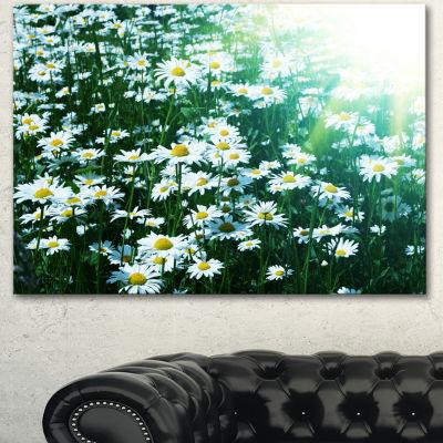 Designart Sunny Garden With Cute White Flowers Floral Canvas Art Print - 3 Panels