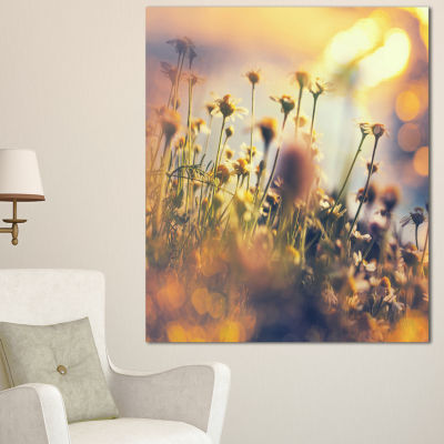 Designart Sunny Meadow Flowers And Grass Large Flower Canvas Art Print