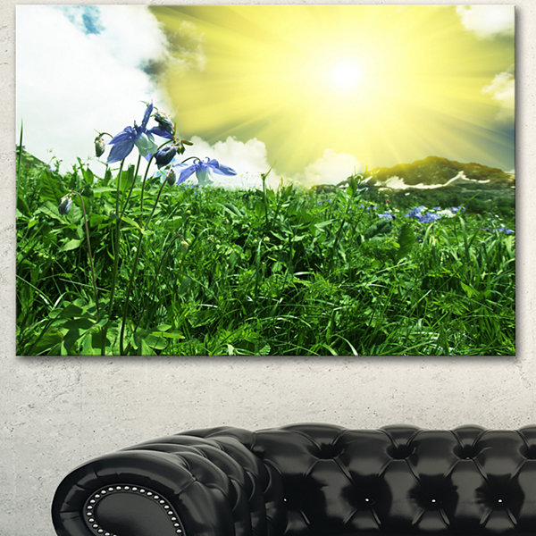 Designart Sunny Meadow With Green Grass Extra Large Landscape Canvas Art