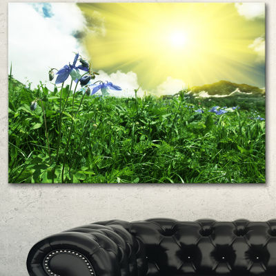 Designart Sunny Meadow With Green Grass Extra Large Landscape Canvas Art - 3 Panels