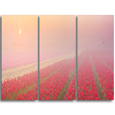 Designart Sunrise Over Rows Of Tulips Landscape Triptych Canvas Art Print