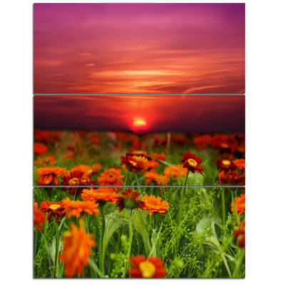 Designart Sunset Flowers With Red Sky Modern Landscape Wall Art Triptych Canvas
