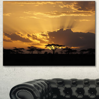 Designart Sunset In Africa With Acacia Tree ExtraLarge Landscape Canvas Art - 3 Panels