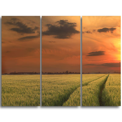 Designart Sunset Over A Field Of Cereals Extra Large Wall Art Landscape