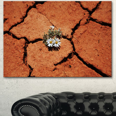 Designart Surviving Flowers On Drought Land ExtraLarge Landscape Canvas Art