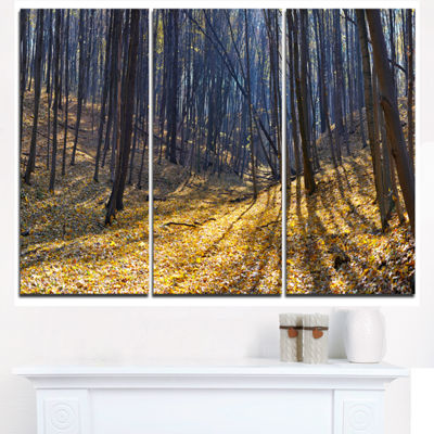 Designart Thick Autumn Forest Woods Oversized Forest Triptych Canvas Artwork
