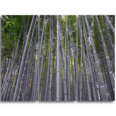 Designart Thick Bamboo Trunks In Japan Forest Triptych Canvas Wall Art Print