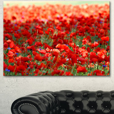 Designart Thick Red Poppy Flower Field Floral Canvas Art Print
