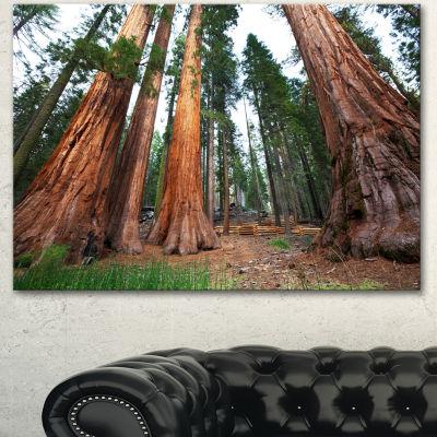 Designart Three Large Sequoya Trees African Landscape Canvas Art Print - 3 Panels