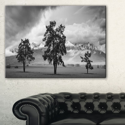 Designart Three Trees In Front Of Mountains Landscape Artwork Canvas