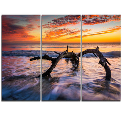 Designart Tree And Waves In The Atlantic Ocean Seascape Triptych Canvas Art Print