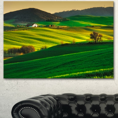 Design Art Trees And Farmland Near Volterra ExtraLarge Landscape Canvas Art