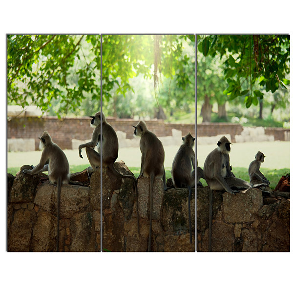 Design Art Troop Of Monkeys In Sri Lanka African Landscape Canvas Art Print - 3 Panels