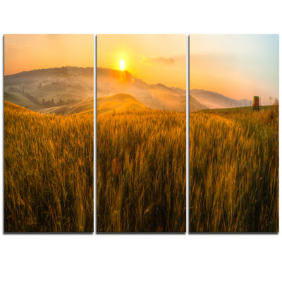 Designart Tuscany Wheat Field At Sunrise LandscapeArtwork Triptych Canvas