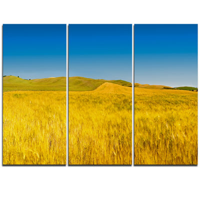 Designart Tuscany Whet Field On Sunny Day Landscape Artwork Triptych Canvas