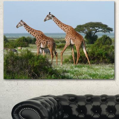 Designart Two Giraffes In African Savannah AfricanCanvas Art Print - 3 Panels
