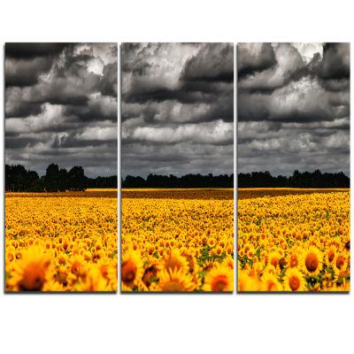 Designart Van Gogh Summer With Clouds Landscape Artwork Triptych Canvas