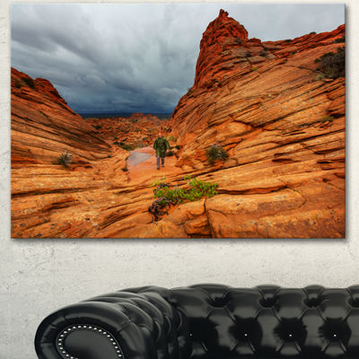 Designart Vermillion Cliffs Wilderness OversizedLandscape Canvas Art