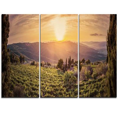 Designart Vine Farm At Sunset Tuscany Panorama Landscape Triptych Canvas Art Print