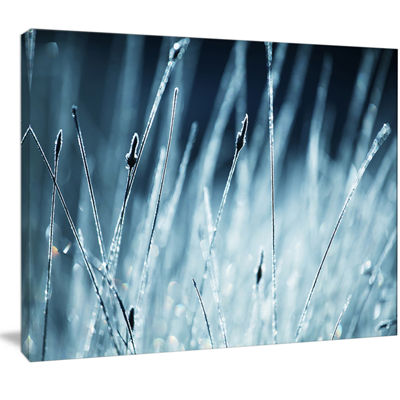 Designart Wet Grass Black And White Floral CanvasArt Print