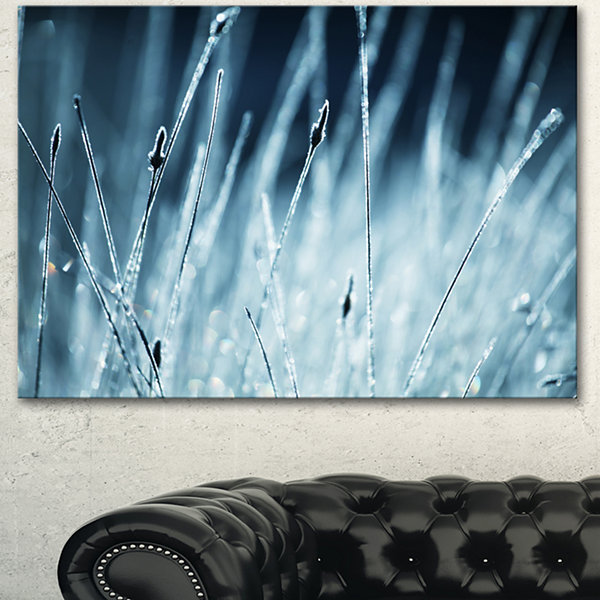 Designart Wet Grass Black And White Floral CanvasArt Print - 3 Panels