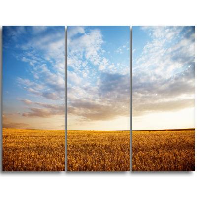Designart Wheat Field Under Summer Sky Extra LargeWall Art Landscape