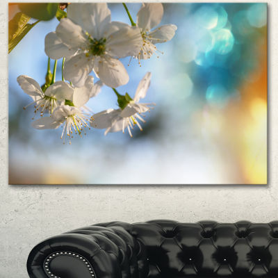 Designart White Blossoming Cherry Tree Floral Canvas Art Print