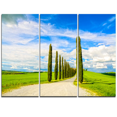 Designart White Road Through Cypress Trees Oversized Landscape Wall Art Print