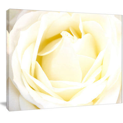 Designart White Rose With Close Up Petals Floral Canvas Art Print