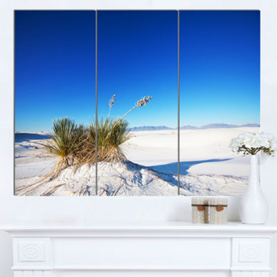 Designart White Sands Park In Usa Landscape CanvasArt Print - 3 Panels