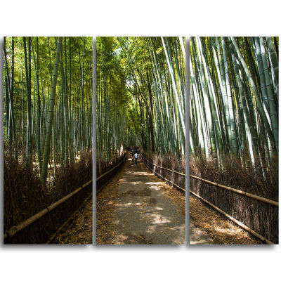 Design Art Wide Pathway In Bamboo Forest Forest Triptych Canvas Wall Art Print