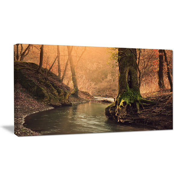 Designart Wild Creek In National Park Modern Forest Canvas Wall Art