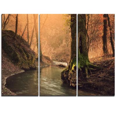Designart Wild Creek In National Park Modern Forest Triptych Canvas Wall Art