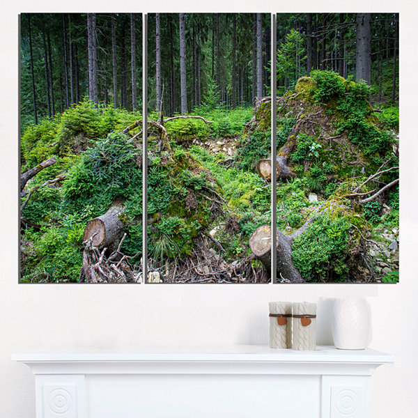 Designart Wild Deep Forest Rocks And Hills Landscape Triptych Canvas Art Print